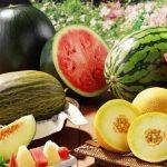 Чем полезны дыни и арбузы: диетологи о пользе бахчевых