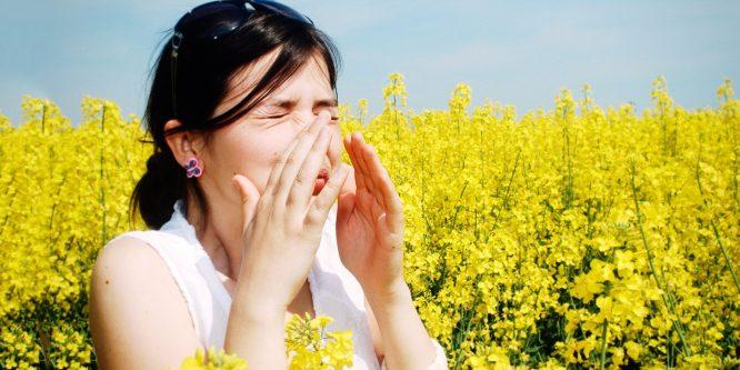 Главные летние аллергены: профилактика и лечение