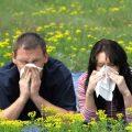 Весенняя аллергия: особенности и способы лечения