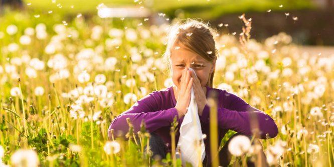 Как избежать весенней аллергии: готовимся заранее