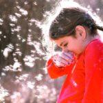 Как спастись от аллергии на тополиный пух