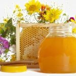 Чем полезен для здоровья майский мед