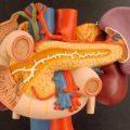 Функциональные заболевания билиарного тракта