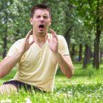 Пыльцевая аллергия: клинико-аллергологическая диагностика