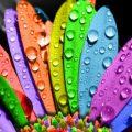Цвет может повлиять на ваше кровяное давление