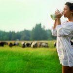Четыре причины, почему необходимо включить молоко в свой рацион