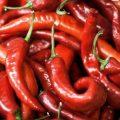 Врачи назвали лучший овощ для долголетия