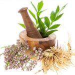 Два растительные средства для повышения эластичности сосудов и профилактики атеросклероза