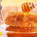 Как с помощью меда вылечить различные заболевания