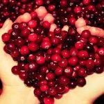 Эта маленькая ягода способна вылечить множество заболеваний